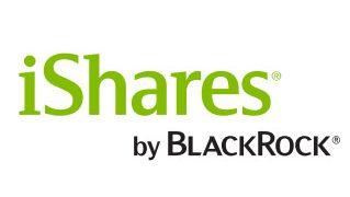 少額でS&P500に投資できる!iシェアーズ S&P 500 米国株 ETF(1655)の評価・解説